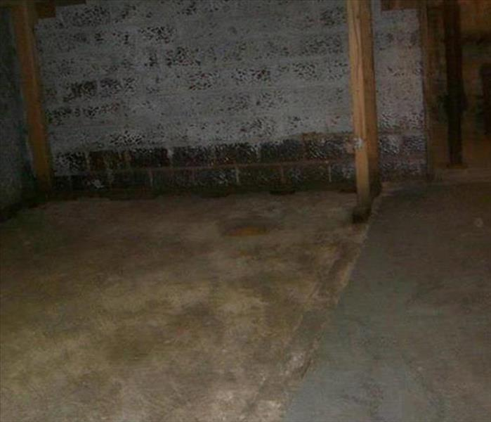 Basement with brick walls and cement floor